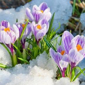 Нумерологический прогноз для рожденных 13-го марта