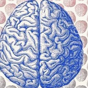 Ученые назвали список увлечений, которые сделают вас умнее