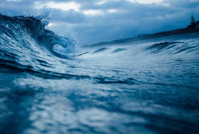 Ученые рассказывают, как вблизи океана ведет себя наш мозг
