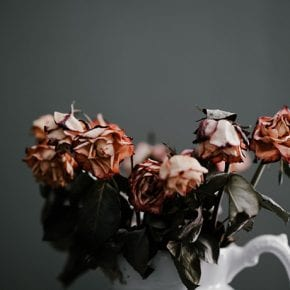 5 печальных доказательств того, что нарциссы не способны любить